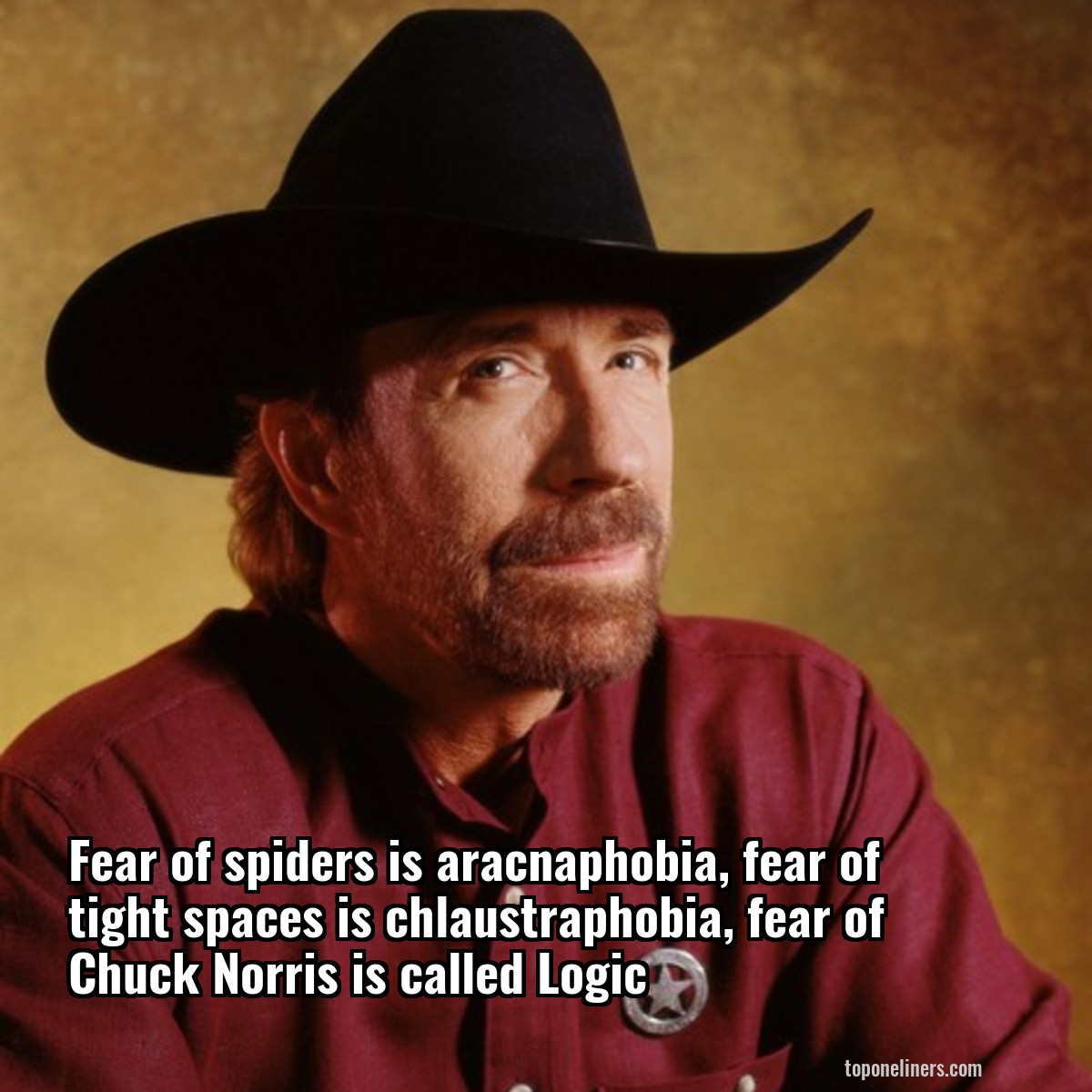the amazing story of chuck norris essay